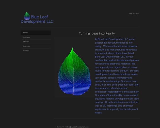 Blue Leaf Development