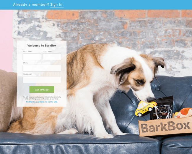 Bark & Co (BarkBox, BarkPost, BarkShop)
