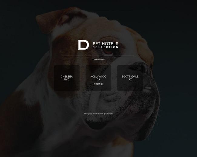 D Pet Hotels Franchise