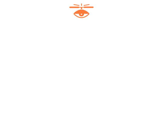 Miami Drones