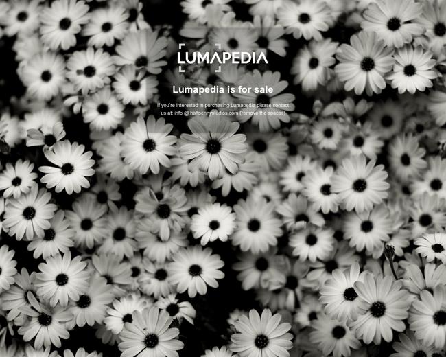 LUMAPEDIA
