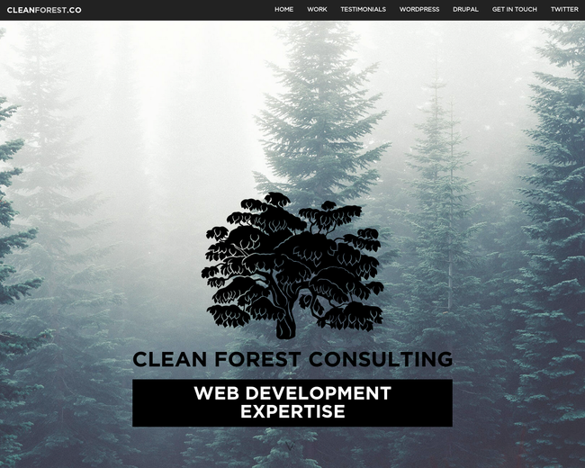 Clean Forest Consulting