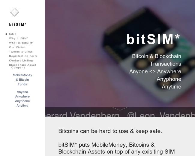 bitSIM Holdings
