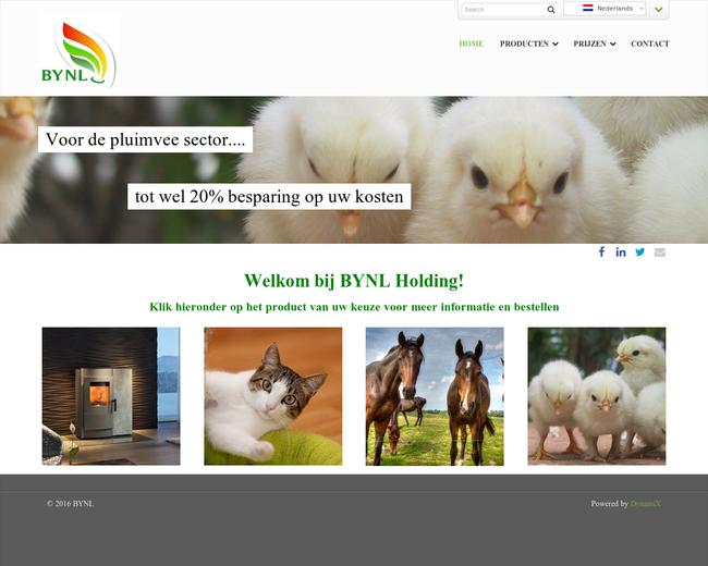 BYNL Holding