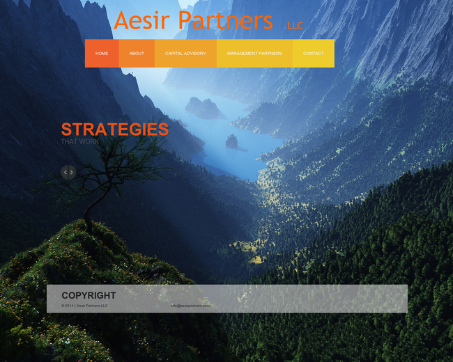 Aesir Partners