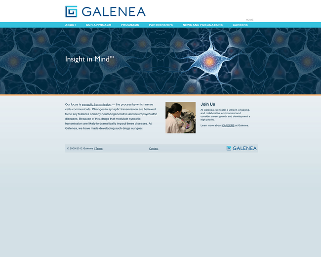 Galenea