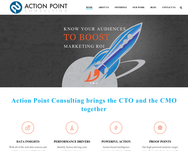 Action Point Consulting