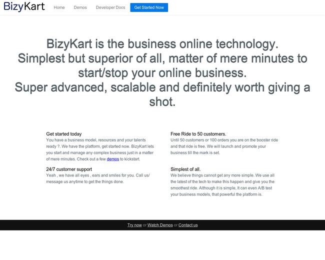 BizyKart