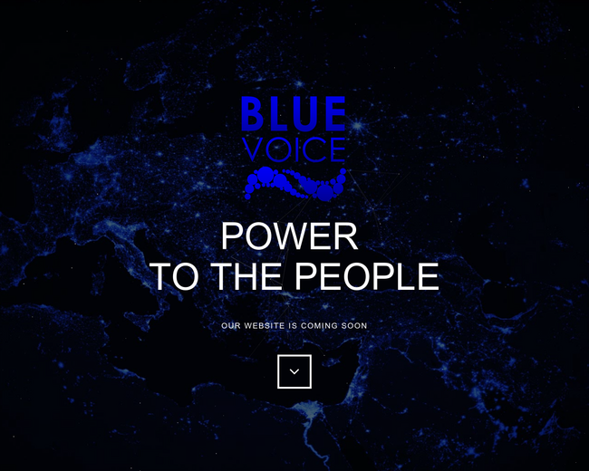 Blue Voice Enterprises