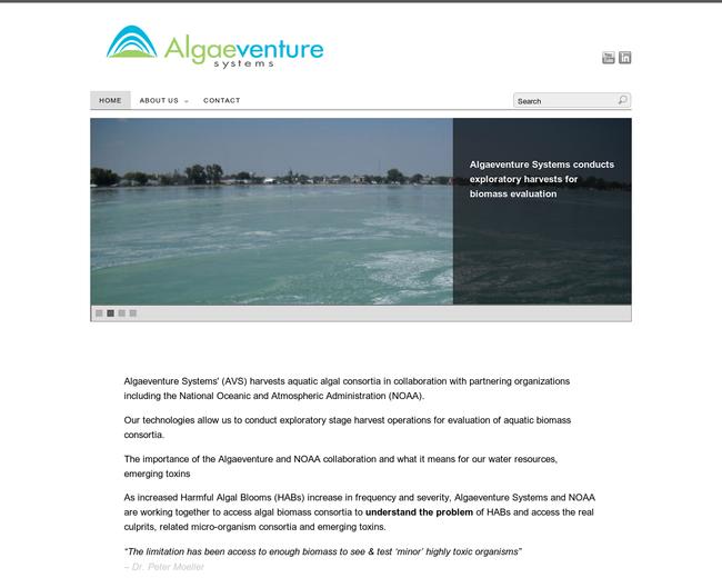 Algaeventure Systems