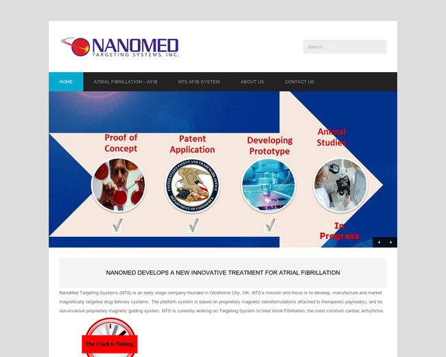 NanoMed Targeting Systems