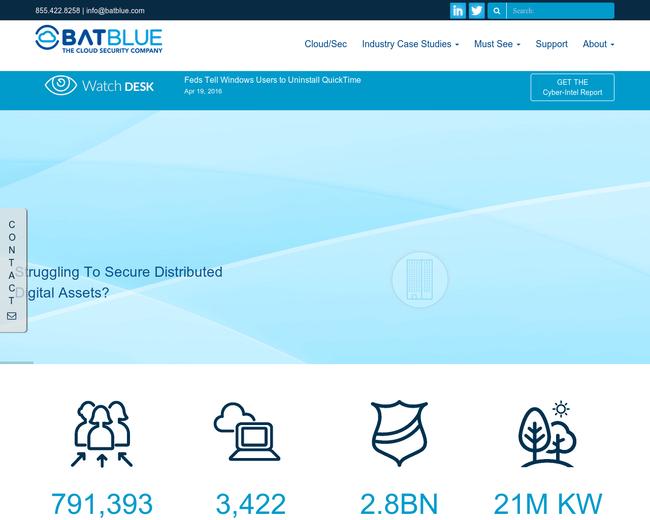 Bat Blue Networks